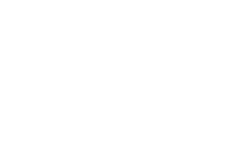 Town of Ringle
